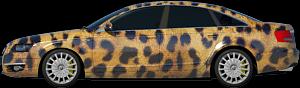 Текстура Шкура Леопарда